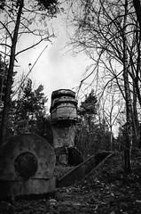 N_10_TX400-25 (vanKeck) Tags: bw tower film observation pentax kodak trix area mx hel fortified xtol
