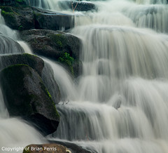 IMGP1190 (acornuser) Tags: park trees blackandwhite bw reflection water woodland garden landscape waterfall spring surrey cascade virginiawater blosom sigma1770 pentaxk3