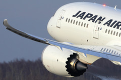 B-787 wingflex (Artyom Anikeev) Tags: japan plane airplane aviation boeing airlines spotting avia planespotting b787 domodedovo dreamliner uudd anikeev artyomanikeev