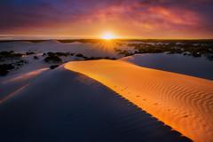 Light Curve (Dylan Toh) Tags: sunrise photography dawn sand photographer desert dunes australian australia southaustralia kangarooisland littlesahara landscsape everlook