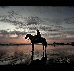 I am my own Destiny (Aliraza Khatri) Tags: pakistan sunset sea horse silhouette view ride destiny karachi sindh feelings khatri aliraza alirazakhatri