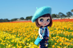 "Hello ""the flower field""!"