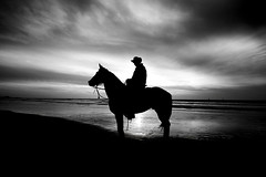 The Sea Cowboy (Lior. L) Tags: sunset sea blackandwhite horse reflection beach monochrome silhouette wow cowboy brilliant