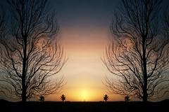 Puesta de sol (MarinaArg) Tags: