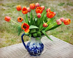 There's almost nothing that a big bunch of tulips won't cure... (blamstur) Tags: flowers blue orange white green spring tulips bouquet