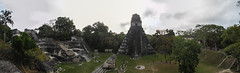 "Tikal: vue depuis le Temple des Masques <a style=""margin-left:10px; font-size:0.8em;"" href=""http://www.flickr.com/photos/127723101@N04/26171510611/"" target=""_blank"">@flickr</a>"
