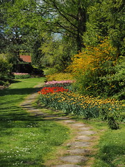 mozirski-gaj_43 (carlo) Tags: flowers olympus slovenia slovenija fiore botanicalgarden omd em1 ortobotanico giardinobotanico mozirje mozirskigaj