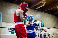 Brunette boxing st paul mn