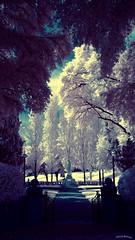 Lady In The Garden (Shedraway Photos) Tags: statue garden landscape ir gate outdoor wwii scenic bluesky landmark olympus infrared worldwar2 ladyinthegarden parkentry