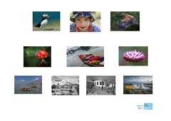 LRPS (Janet Marshall LRPS) Tags: panel photographs rps success distinction lrps royalphotographicsociety licentiate