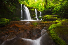 Spring Wonder - 1552 (J & W Photography) Tags: nature misty fog creek landscape nationalpark stream waterfalls gsmnp 2015 greatsmokymountainnationalpark jwphotography greatsmokymountainnationalp