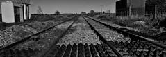 Tracks to Infinity (Freespirit 1950) Tags: infinity