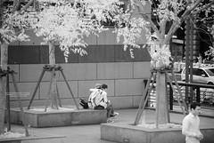 DSC01324 (zkj102) Tags: city tree rain ir 3d cityscape shanghai stereo infrared    htconex
