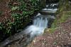 Cascata Parco Monza (Matteo Scardino) Tags: parco verde water canon river fiume acqua ruscello h20 monza cascata 18135 parcodimonza 70d cascatella canon70d