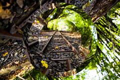 Twisted Realities (Elliot Tratt) Tags: trees 2 summer tree green lines canon landscape eos cornwall track mark tracks rail railway twist line greens 5d twisted leading edit northcornwall 2016 leadinglines