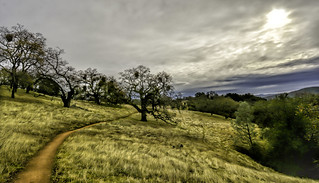 Henry Coe State Park (Explored)