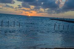rasarit in Caye Cauker