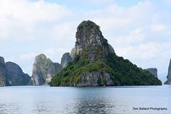 D72_7537 (Tom Ballard Photography) Tags: vietnam halongbay tourboats bayclub 20151118