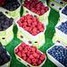 Fruit & Berry