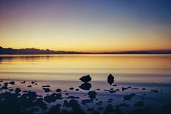 Quak (MSC_Photography) Tags: sunset lake alps color reflection water bench gold evening abend duck wasser sonnenuntergang kodak bokeh ducks bank chrome 200 electro alpen 35 enten ente spiegelung gs yashica chiemsee 45mm chrom 117 f17 yashinon