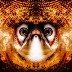 p r o b e (epiclectic) Tags: reflection animal photoshop mirror design graphic wildlife humor perspective manipulation images symmetry reflect symmetrical mutant twisted enhancement epiclecticcom epiflection epiflectionbyepiclecticcom