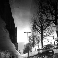 Wet #03 (c-dr-c) Tags: wet water rain puddle eau upsidedown outdoor bordeaux pluie reflet reflets reflects flaque mouill lenvers