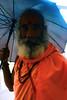 DSC05530 (kkfp) Tags: india color yoga fruit naked fire photography vishnu streetphotography covered sacred yogi ash maharashtra shiva sept baba sadhu saffron ashram naga mela offerings nashik 2015 kumbhmela mahakumbh