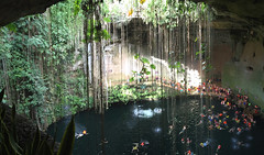 Chichen Itz (cenote) (JasonLee) Tags: beautiful swimming mexico vines diving exotic cenote cancun splash sinkhole swimminghole chicenitza