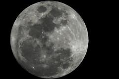 The moon over Jeddah 23-01-16 - full moon (mostaphaghaziri) Tags: moon canon january full 23 jeddah 60 hs sx 2016