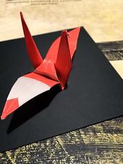 crane by Mingchun