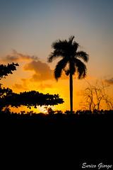 DSC_0112 (Promao80) Tags: lago tramonto cuba moron cavallo viaggio vacanza calesse