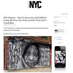 Izolag and more on NYC store shutters on StreetArtNYC.org (LoisInWonderland) Tags: nyc streetart graffiti bronx southbronx streetartnyc izolag storeshutter