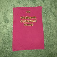 t shirt 22b (seanduckmusic) Tags: tshirts blouses witsendep