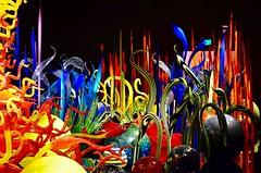 DSC_1677 (erica.hendershot) Tags: seattle chihuly tourism glass skyline garden washington place market pike pikeplace vibrantcolors seattlewashington glassexhibit chihulygardenandglass chihulygarden