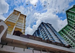 Fly away (Edward Tian) Tags: architecture residential hdb rochor publichousing urbandevelopment uniquearchitecture