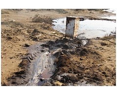 IMG_7344 (Schamsz) Tags: soil oil posion alat humanwork lt