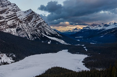 Sunrise at Peyto Lake (michael__williamson) Tags: rockymountains peytolake