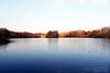 B E A U T Y (Mariana Silva Photography) Tags: trees lake water river rivermersey lae