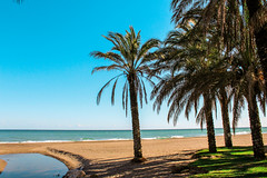 Malaga beach (Emily_Fletcher) Tags: blue trees sea holiday beach beautiful spain warm sandy relaxing calming sunny palm shade malaga