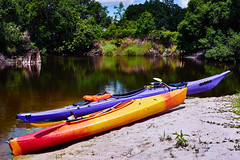 Prarie Creek Adventure (FunkadelicSam) Tags: travel blue nature water birds animals sport clouds creek river landscape real fun outdoors smog amazing woods skies florida action wildlife adventure swamp paddling kayaks prarie