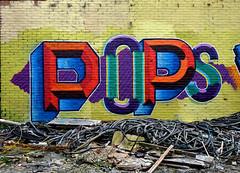 abandoned factory breukelen (wojofoto) Tags: holland graffiti nederland pop netherland pops evolve breukelen wolfgangjosten wojofoto