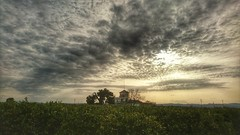 Sunset in the field. (PhotoMont) Tags: flickr hdr sunsetssunrises qualityhdr flickrnature flickrcentraluncensored flickrenespaol hdrunlimited pointofwiew hdrforfree fvac elmanicomio hdrenespaol elmundopormontera apersonalwiewpoint sunsetssunrisesarroundtheworld