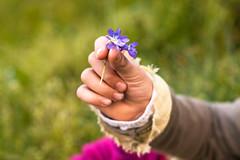 14/52 Manos (Nathalie Le Bris) Tags: hand bokeh main violet mano violeta violette