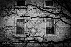 A (jah32) Tags: windows light shadow blackandwhite bw toronto canada halloween window monochrome architecture dark blackwhite shadows darkness universityoftoronto monochromatic haunted ont uoft cursed lightroom dayfornight cmwdblackwhite