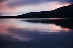 Loch Lomond (anna steppenwolf) Tags: lake nature water landscape scotland lochlomond