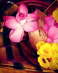 (Devanathan Ram) Tags: flowers flower temple worship yatra puja kumbakonam mobileclicks motog3clicks motorolag3