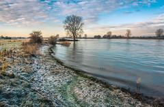 Let the river in (Ingeborg Ruyken) Tags: morning winter river flickr frost january maas dropbox januari ochtend meuse vorst rivier 2016 floodplain empel natuurfotografie riverforeland maasuiterwaarden 500pxs