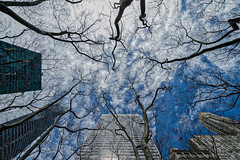 the sky over Bryant Park (thomas.reissnecker) Tags: nyc newyork manhatten bryantpark