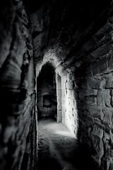 The light, Bothwell Castle (wwshack) Tags: scotland historicscotland lanarkshire bothwell bothwellcastle