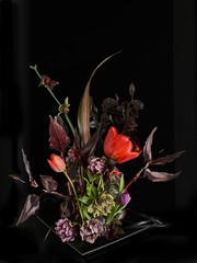 tones of red (Wendy:) Tags: flowers red flower style tulip lowkey arrangement oldmaster